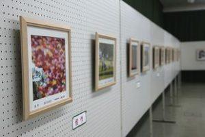 写真コンテスト入賞作品展