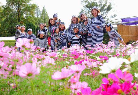 2016秋の写真コンテスト入賞作品