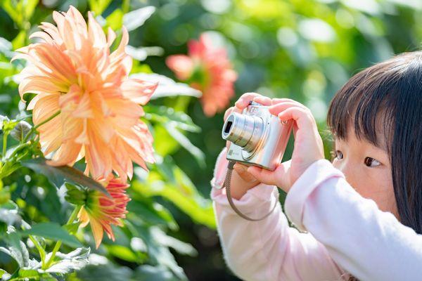 2019秋の写真コンテスト入賞作品
