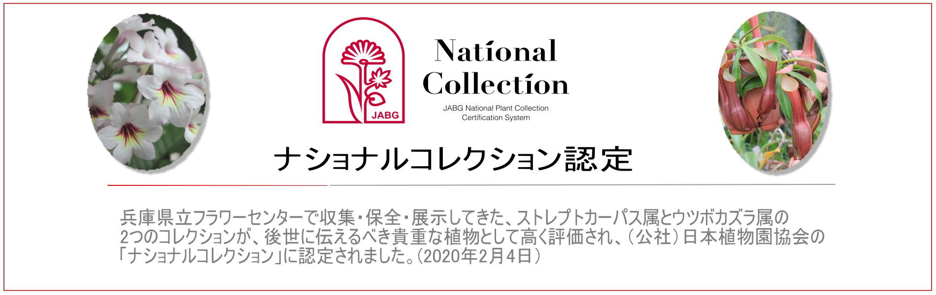 ナショナルコレクション認定