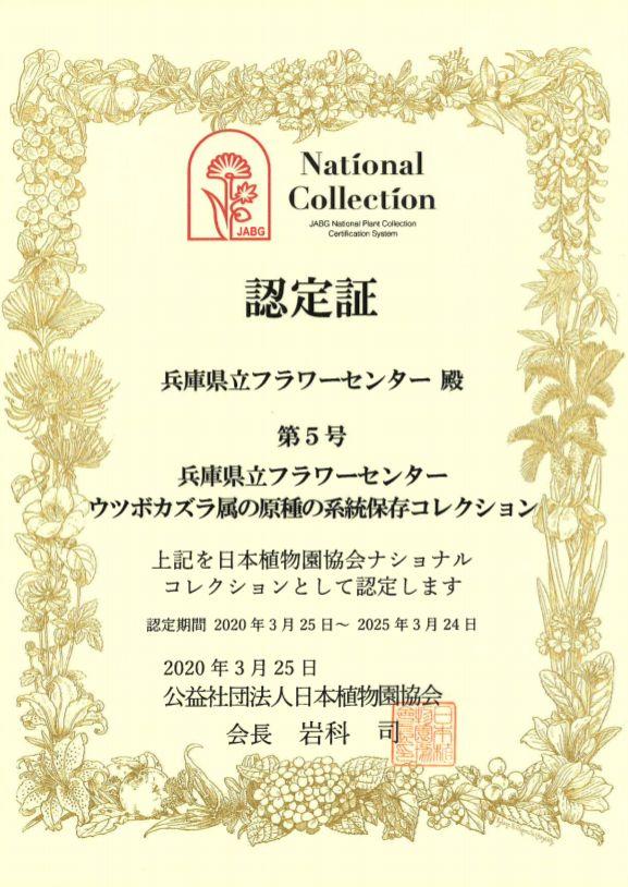 ナショナルコレクション認定証ウツボカズラ